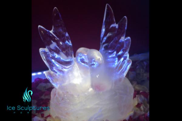 love-doves-2F79CB745-91D3-3628-BB80-949F04B07202.png